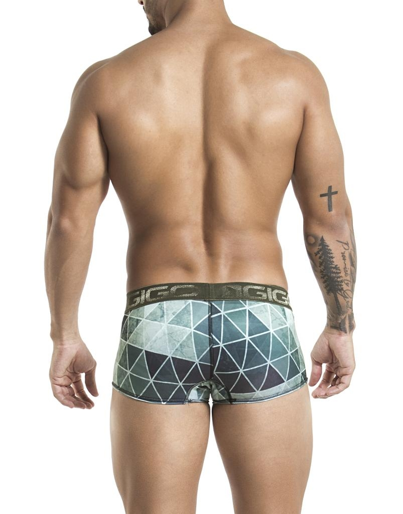 https://cdn.ateneaservices.com/root/614/seyer/catalog/items/1542927775_icon/g02003boxershortformat.back.jpg