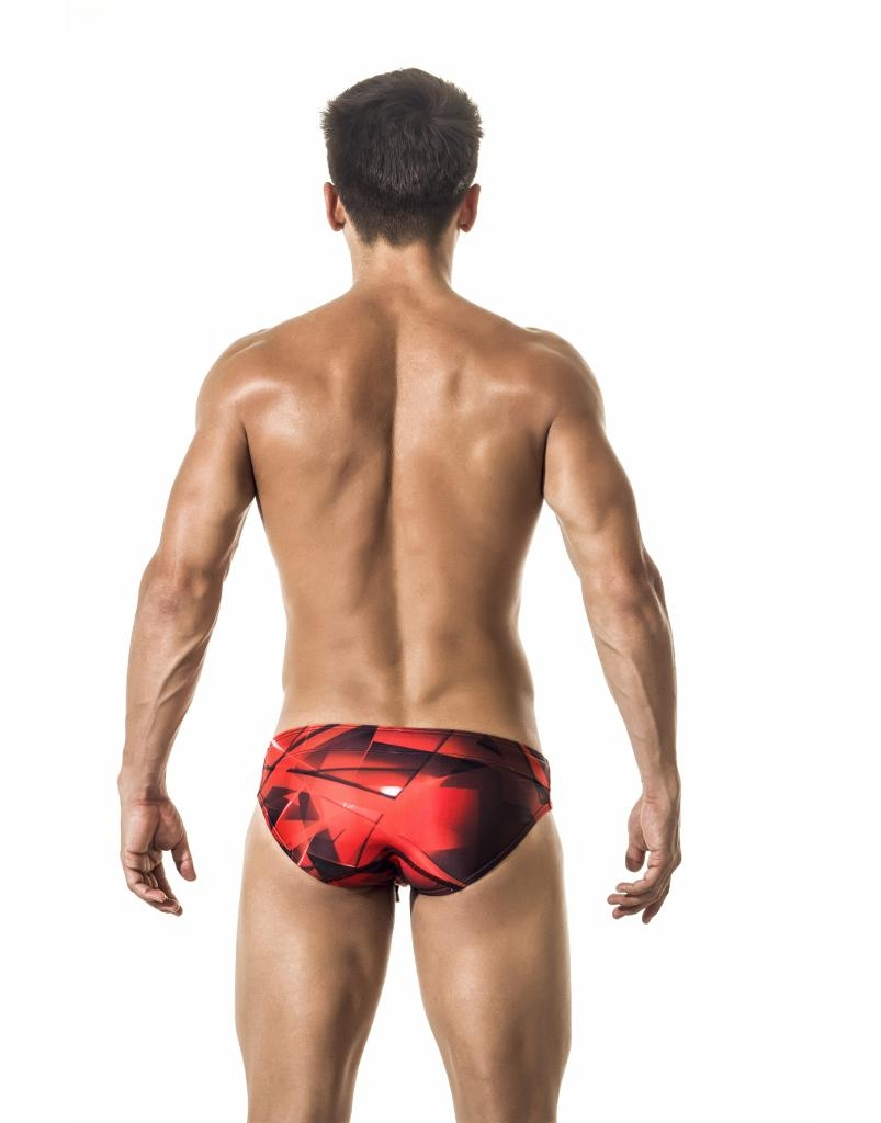 https://cdn.ateneaservices.com/root/614/seyer/catalog/items/1547185753_icon/s02003swimwearbrieffast.back.jpg