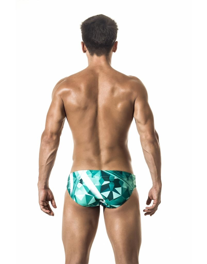 https://cdn.ateneaservices.com/root/614/seyer/catalog/items/1547186214_icon/s02003swimwearbrieffuturistic.back.jpg